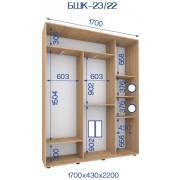 Двухдверный Шкаф Купе (Бюджет) BHK-23/22